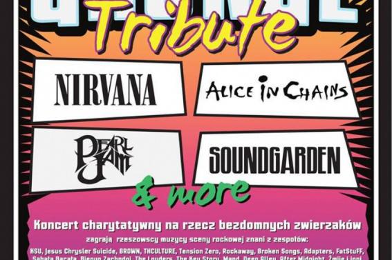 Vinyl - koncert charytatywny z muzyką grunge